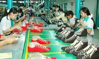 Vietnam prevé aumento del valor de exportación de calzado y bolsos de cuero en 2020