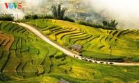 Exaltan Mu Cang Chai como uno de los mejores destinos para turistas internacionales
