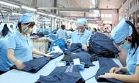 Tratan potencialidades de exportaciones vietnamitas a Estados Unidos