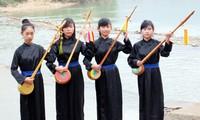 Dan tinh, el instrumento musical típico de los Tay