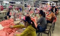 Realizarán durante dos meses censo empresarial en Vietnam