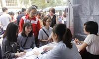 Más de 960 empresas unen manos para resolver desempleo en tiempos de Covid-19