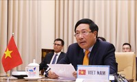 Vietnam reafirma su papel proactivo en el Consejo de Seguridad de la ONU
