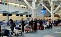 Vietnamitas en Canadá regresan al país en vuelo de rescate