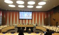 Consejo de Seguridad de la ONU debate sobre la situación de Yemen