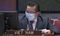 Vietnam preocupado por la situación de la violencia en República Democrática del Congo