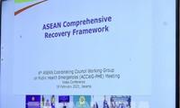 Vietnam y los demás miembros de la Asean acuerdan usar el Fondo regional de respuesta al covid-19 para adquirir vacunas