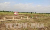 Progresa el proyecto estadounidense-vietnamita de descontaminación de la dioxina