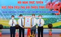 Bac Giang celebra conferencia en línea para impulsar el consumo de lichi