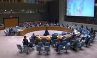 Vietnam participa en debate del Consejo de Seguridad de la ONU sobre Colombia