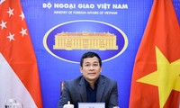 Vietnam y Singapur refuerzan la cooperación en la lucha contra el covid-19