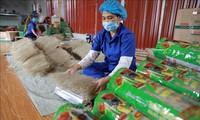 Le pays compte 3.200 nouveaux produits OCOP