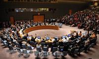 Conseil de sécurité de l'ONU : nomination de cinq nouveaux membres non-permanents