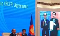 Le Japon est le premier pays adoptant le projet de loi d'approbation du RCEP