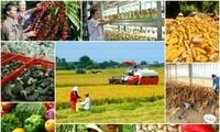 Pour une sécurité alimentaire nationale jusqu'en 2030