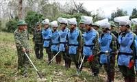 Dommages de guerre: le Vietnam et les États-Unis unanimes pour renforcer la coopération