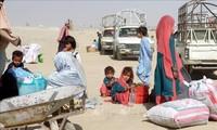 L'UE souligne l'importance de poursuivre les aides humanitaires en Afghanistan