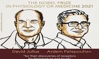 Le prix Nobel de médecine aux Américains David Julius et Ardem Patapoutian