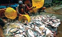 วุฒิสภาสหรัฐเห็นชอบการยกเลิกโครงการตรวจสอบปลาสวายและปลาบาซาของกระทรวงการเกษตรสหรัฐ