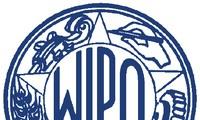 เวียดนามเข้าร่วมโครงการพัฒนาของ WIPO อย่างเข้มแข็ง
