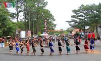 สีสันแห่งวัฒนธรรมเตยเงวียนในเทศกาลบนท้องถนนที่เขตท่องเที่ยวมังแดน