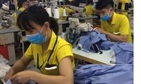ILO ชื่นชมประมวลกฎหมายแรงงานฉบับแก้ไขของเวียดนามที่ได้รับการอนุมัติจากสภาแห่งชาติ