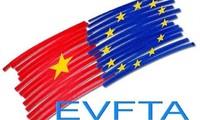สภายุโรปอนุมัติระเบียบสุดท้ายสำหรับอีวีเอฟทีเอ