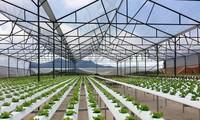 สร้างแรงกระตุ้นสตาร์ทอัพด้านการเกษตรอัจฉริยะ