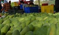 จังหวัด เซินลา ส่งเสริมการส่งออกสินค้าการเกษตร