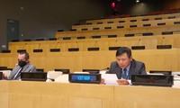 เวียดนามและคณะมนตรีความมั่นคงแห่งสหประชาชาติหารือเกี่ยวกับความผันผวนด้านการเมืองในกินีบิสเซา