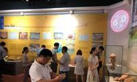 Exhibition highlights Vietnam's feudal names, capitals