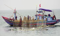 Technology applied to seafood industry