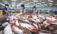 Export of tra fish to US increases slightly