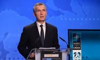 Ten NATO members achieve defense spending goal