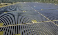 Vietnam one of three nations leading the shift to renewable energy in Asia Pacific