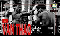 Vietnamese, Tanzanian boxers to vie for IBA World Championship