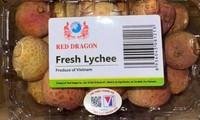 Vietnam's lychees make it to Singapore supermarket shelves