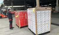 New Japanese partner imports Hai Duong lychees