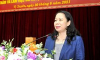 Vice President urges Ha Giang to safeguard border, develop economy