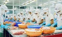 Việt Nam lần đầu xuất siêu cả năm sau gần 2 thập kỷ