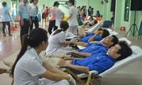 Việt Nam hưởng ứng Ngày Thế giới tôn vinh người hiến máu (14/6)