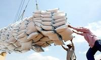 Việt Nam trúng thầu 175 nghìn tấn gạo xuất khẩu sang Philippines