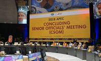 Hội nghị tổng kết các quan chức cao cấp APEC chuẩn bị cho Tuần lễ Cấp cao APEC 2018
