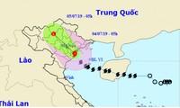 Bão số 2 giật cấp 11 đổ bộ Hải Phòng đến Nam Định, toàn vùng mưa dông gió giật