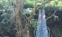 Thời khắc lịch sử ra đời Đài Tiếng nói Việt Nam cách đây 75 năm