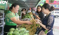 Tỉnh Sơn La tăng cường xuất khẩu nông sản
