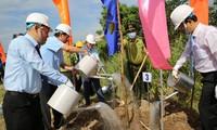Bến Tre phát động trồng 10 triệu cây xanh từ nay đến 2025