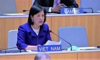 Việt Nam tham dự Phiên họp rà soát chính sách thương mại lần thứ 7 của Ấn Độ tại WTO