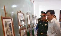 Hoạt động kỷ niệm 126 năm Ngày sinh Chủ tịch Hồ Chí Minh