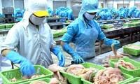 Thêm 12 cơ sở chế biến cá da trơn của Việt Nam được xuất khẩu sang Hoa Kỳ